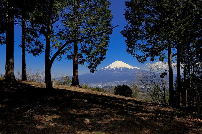 はたご池よりの富士山